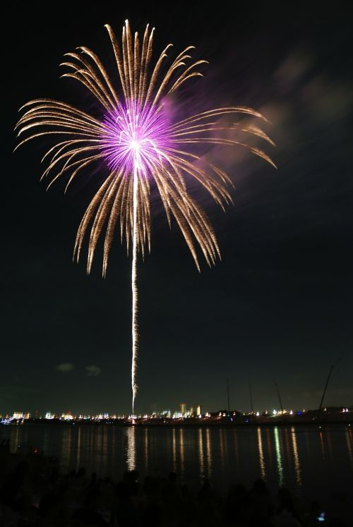 palm fireworks hanabi