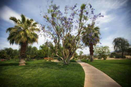 palm springs california park