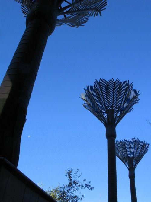 palm-tree sculpture wellington