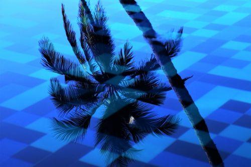 palma pool water