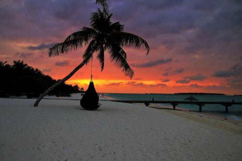 palma beach sand