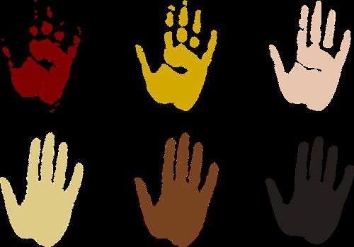 palms diverse prints