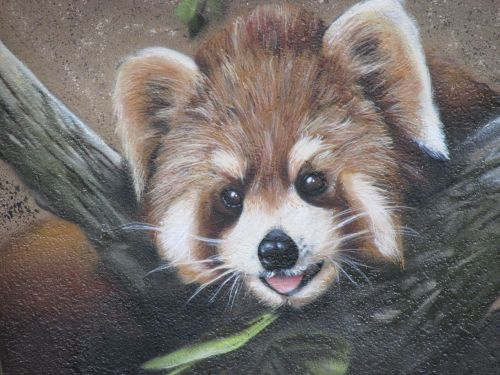 panda bear wall art