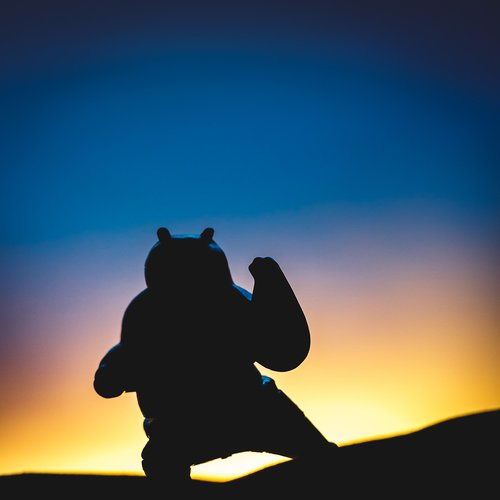 panda  silhouette  sunrise