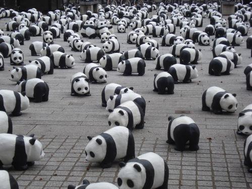 pandas miniature exhibition