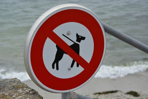 panel ban no dogs allowed