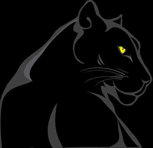 panther  animals  feline