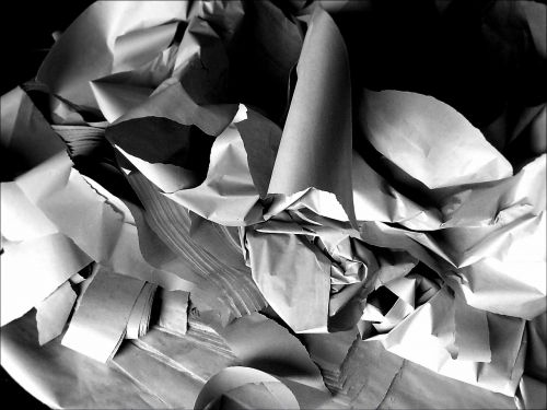paper shredded shredder