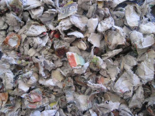Paper Trash 1