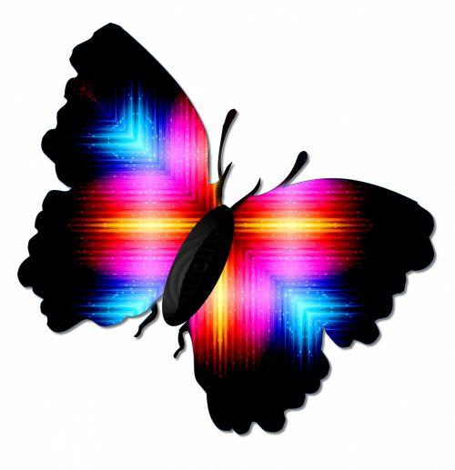 Butterfly # 3
