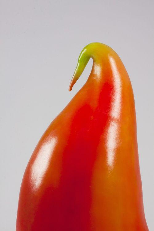 paprika paprika bird bill