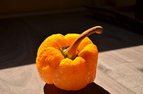 paprika orange wrinkles