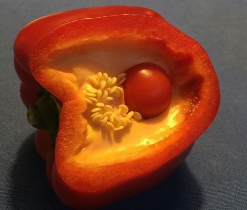 paprika in paprika paprika red