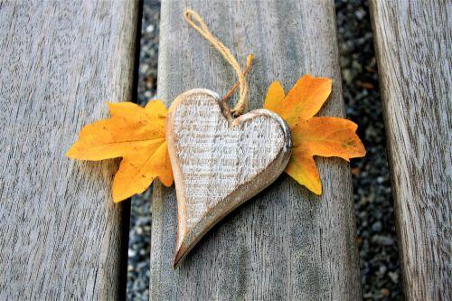 para bench heart