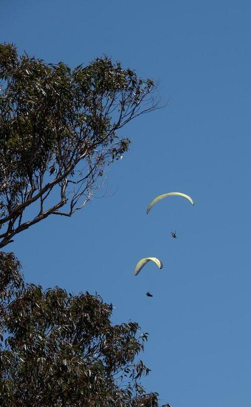para-gliders  glider  two