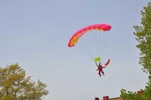 parachute tree himmel