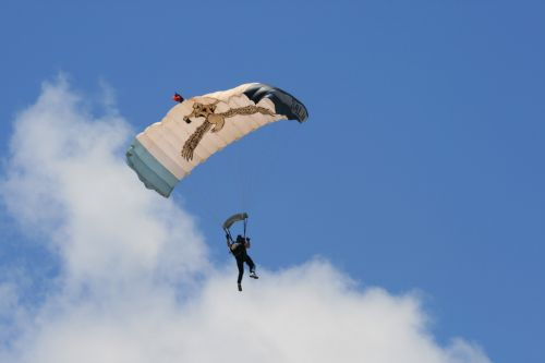 Parachute With Eagle