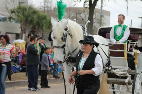 parade horse carriage