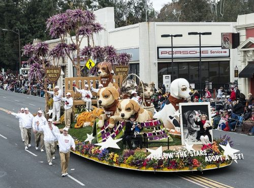 parade float dogs