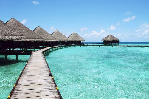 paradise sea turquoise