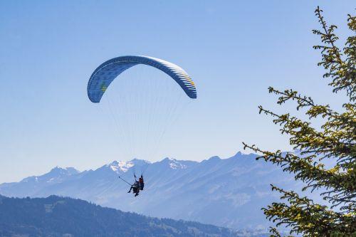 paraglider tandem gliders glider