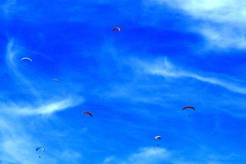 paraglider  hang glider  hang gliding
