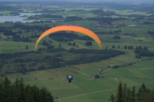 paraglider springer paraglider springer