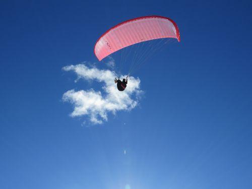 paragliding freedom parasailing