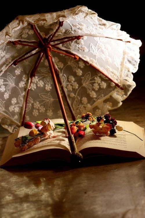 parasol book reading