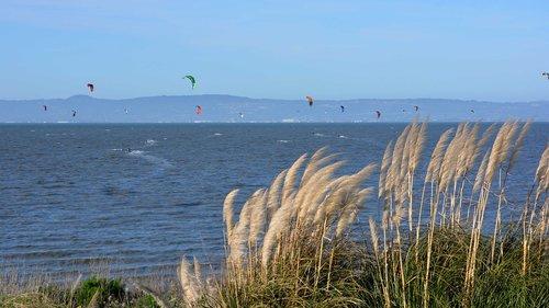parasurfing  paragliding  san francisco bay