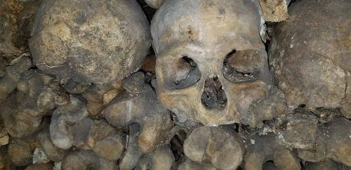 paris dead cemetery