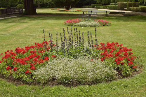 park flowers walk