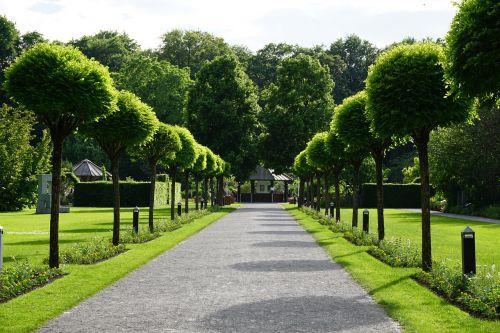 parkas,botanikos sodas,augsburg,Vokietija,turizmas,botanikos,botanika