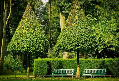 park trees landscape
