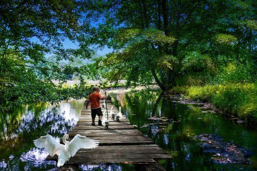 park hobbies river