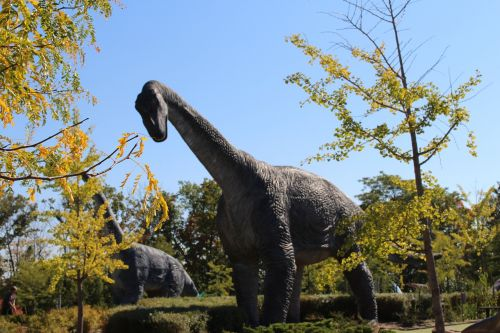 park dinosaur prehistory