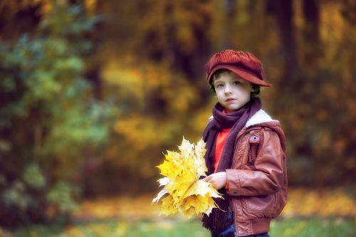 park autumn autumn park