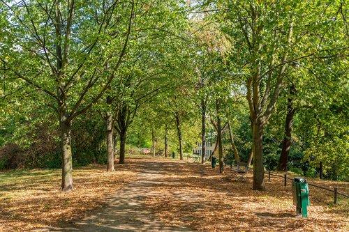 park  magdeburg  nature