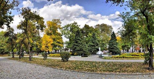 park  autumn  nature