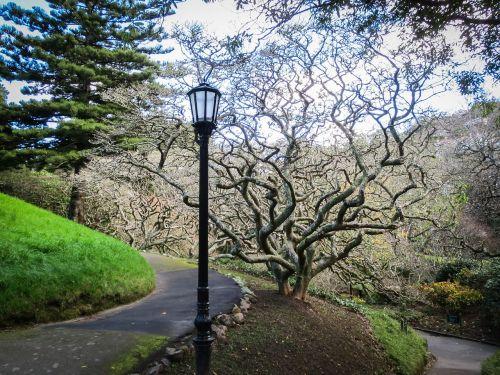park garden lantern