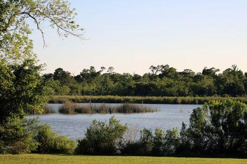 park lake nature