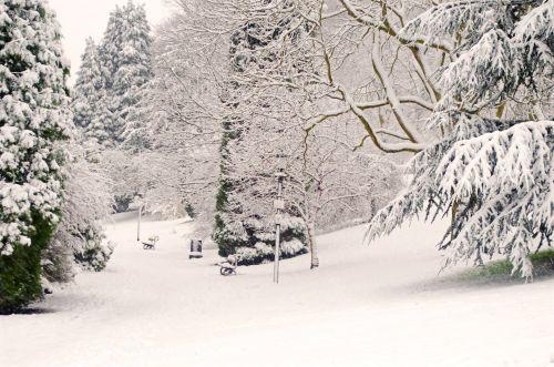 Park And Winter Seasons