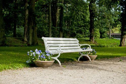 park bench bench tree