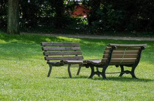 park bench  meadow  nature