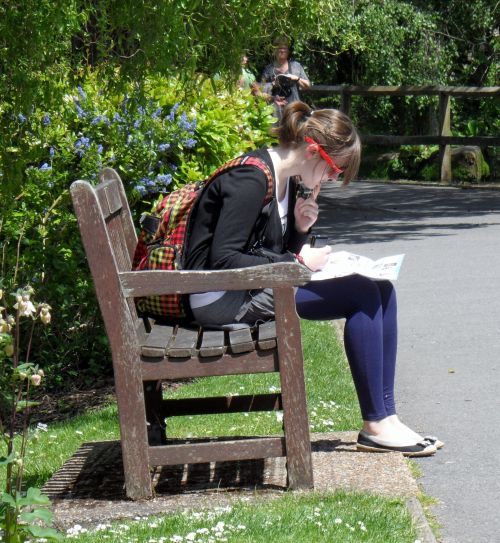 Park Bench Reading