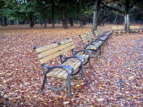 park benches benches park
