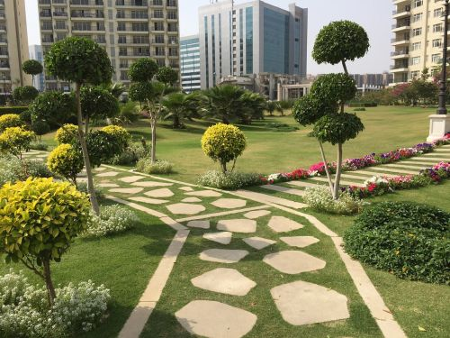 park in a city road bifurcation