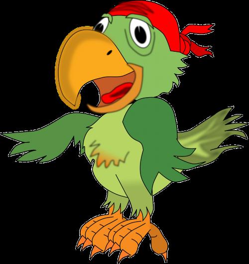 parrot pirates animal