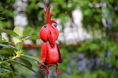 parrot bird zoo