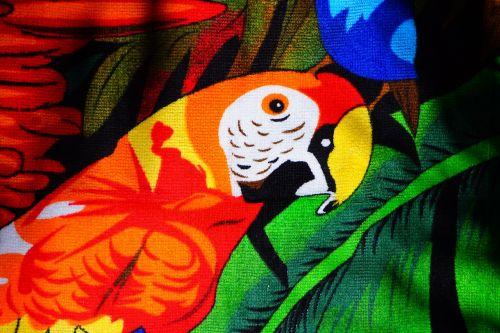 parrot ara red